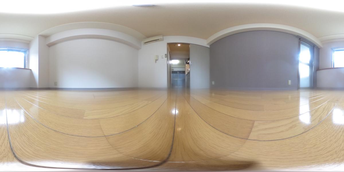 360°パノラマビュー